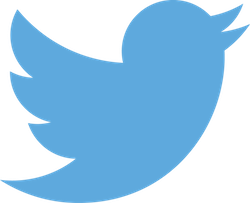 twitter-250